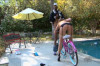 Free Video Preview image 3 from Big Butt Scary MILF Bike Rides